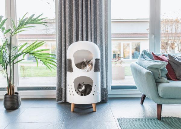 Livingroom Catrub